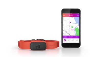 Nuzzle: The Most Reliable GPS Pet Collar