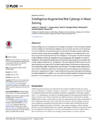 Intelligence-Augmented Rat Cyborgs in Maze Solving