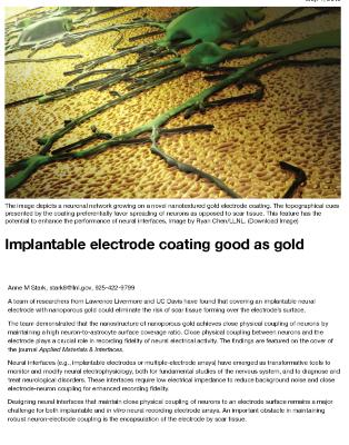 Implantable electrode coating good as gold