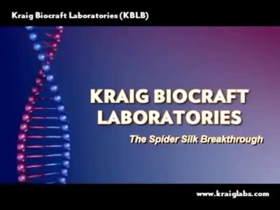 The Spider Silk Breakthrough