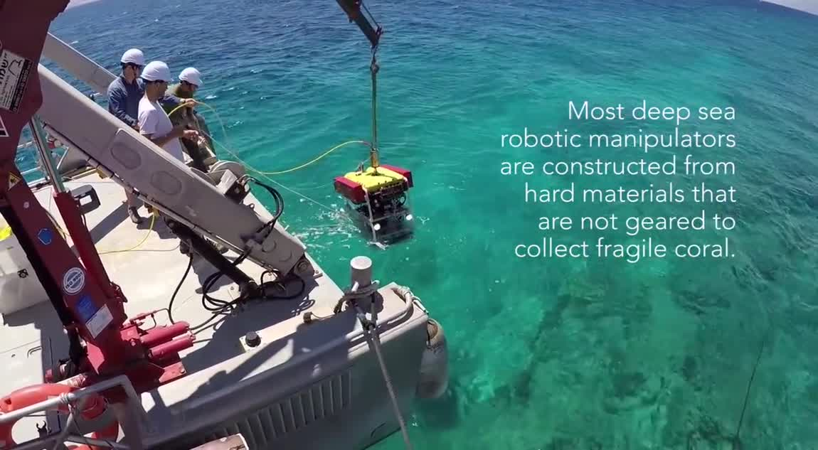 Soft Robotic Grippers for Deep-Sea Exploration