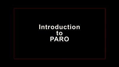 Introduction to PARO