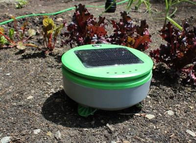 Tertill: The solar powered weeding robot for home gardens