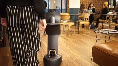 Temi Robot - The Future of Work