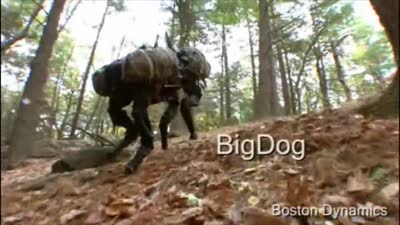BigDog Overview (Updated March 2010)