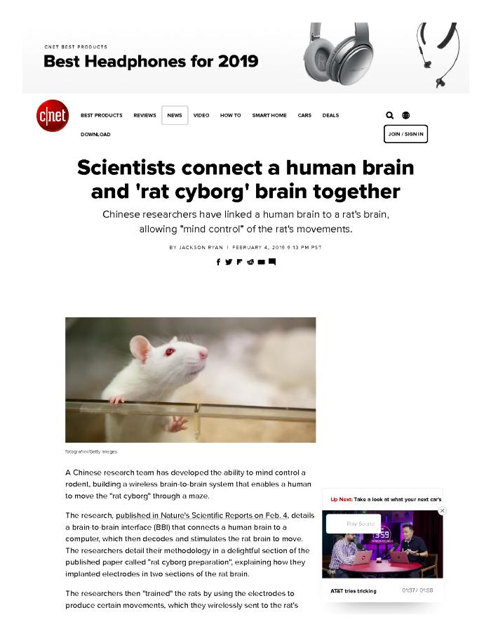 Scientists connect a human brain and 'rat cyborg' brain together