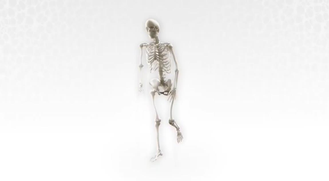 OSSIOfiber Intelligent Bone Regeneration Technology