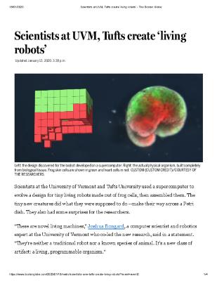 Scientists at UVM, Tufts create 'living robots'