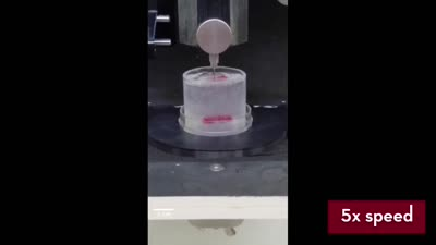Heart pump 3D bioprinting 5X Speed