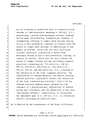 Florida CS/SB 160: Prohibited Acts in Connection with Obscene or Lewd Materials