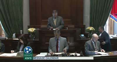 Tennessee Senate Session - 30th Legislative Day