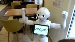 SoftBank pulls plug on Pepper the robot, sources say