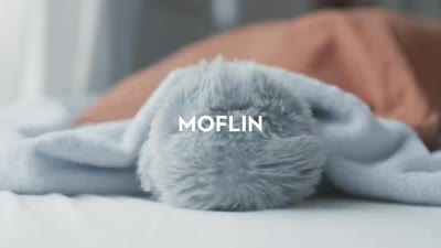 MOFLIN | An AI Pet Robot with Emotional Capabilities