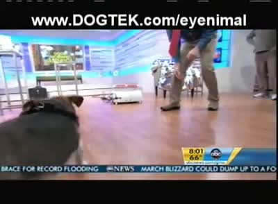 DOGTEK Eyenimal - Global Pet Expo's top product on Good Morning America ABC with Dr. Marty Becker